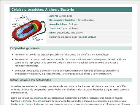 funcion bacteria:
