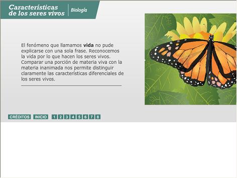 Screenshot de Infografía #20057 - Características de los seres vivos