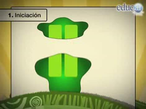 Screenshot 1/3 de Video #40654 - Transcripción del ADN