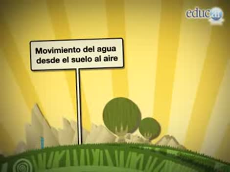 Screenshot 2/3 de Video #40656 - Conducción del agua en las plantas