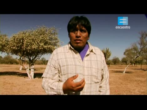 Screenshot 2 de Video Conectados #50294 - Especial Día del Respeto a la Diversidad Cultural