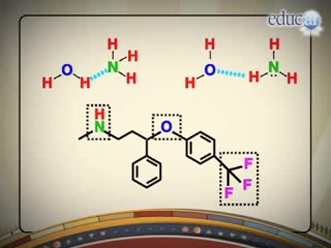 Screenshot 3/3 de Video #40711 - Unión puente de hidrógeno