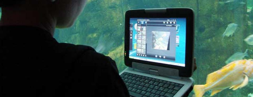 Mujer adulta mirando la pantalla de una netbook